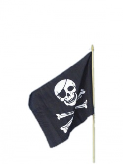 Pirate Flag Black and White on Stick