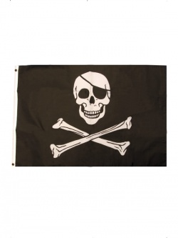 Pirate Flag Black and White with Skull and Crossbones