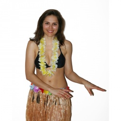 Hawaiian Lei Honolulu Basic - Yellow