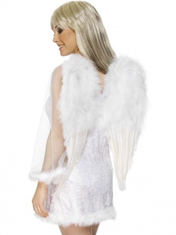 Angels Wings White